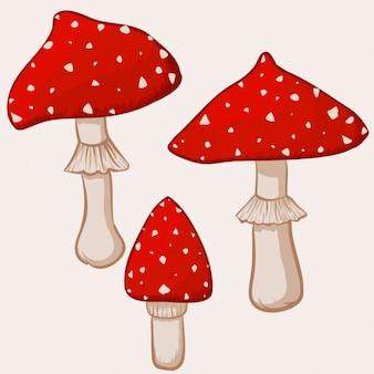 Ilustração de cogumelos amanita muscaria desenhos animados