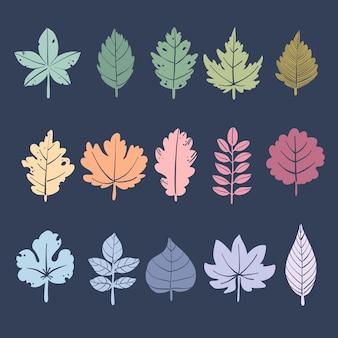 Ilustração de conjunto de folhas