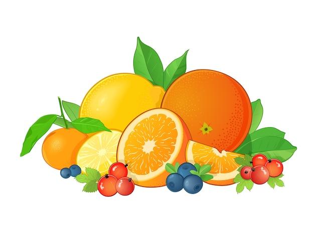 Ilustração de conjunto de frutas