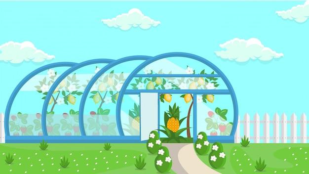 Ilustração de cultivo de frutas tropicais com efeito de estufa