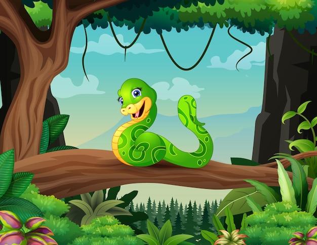 Ilustração de desenho animado de cobra verde em um galho