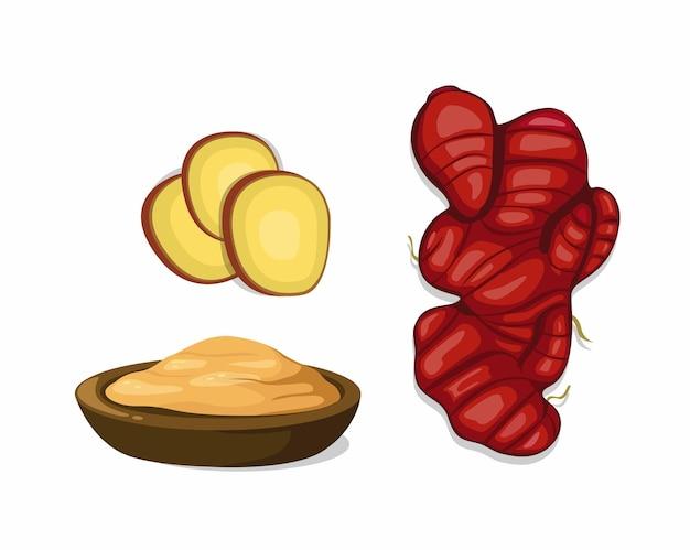 Ilustração de desenho em pó e gengibre vermelho fatiado isolada