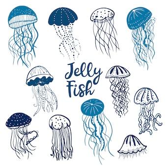 Ilustração de diferentes medusas de silhuetas azuis