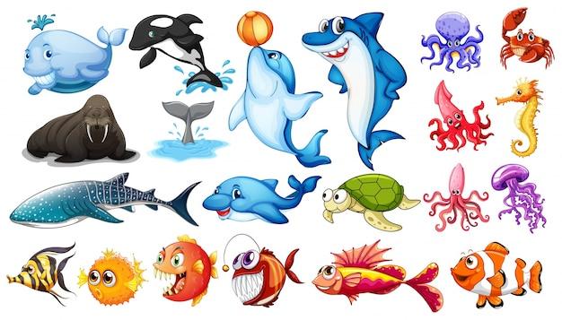 Ilustração de diferentes tipos de animais do mar