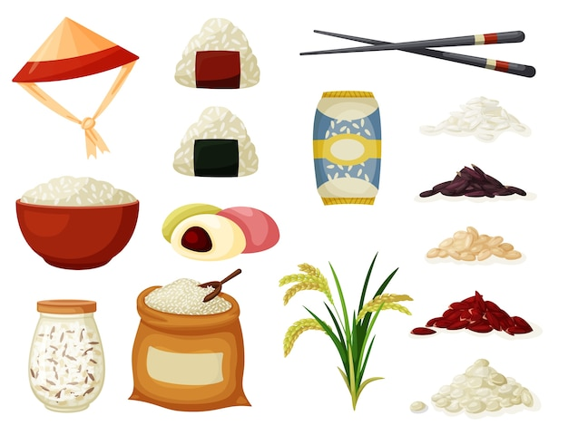Ilustração de espiguetas de cereal de arroz