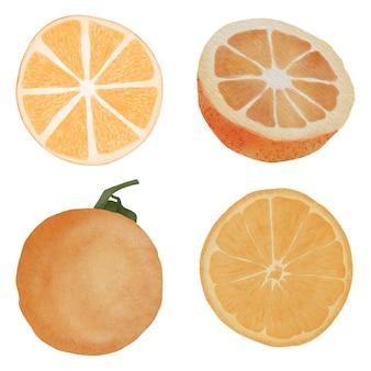 Ilustração de estilo aquarela cítrico laranja comida pintada à mão