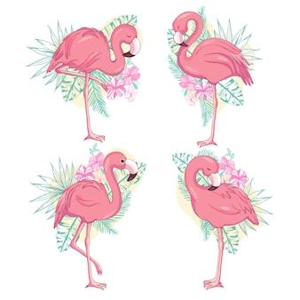 Ilustração de flamingo, flamingo defina vetor