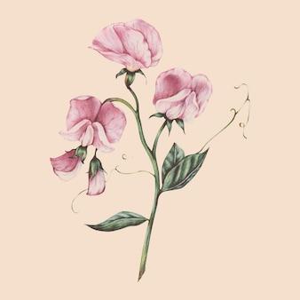 Ilustração, de, flor, aquarela, estilo
