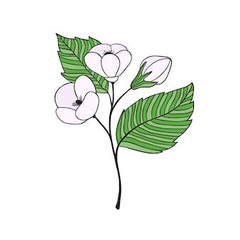 Ilustração de flor de cereja. design de impressão floral.