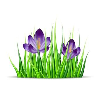 Ilustração de flores e grama