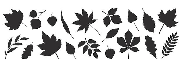Ilustração de folhas pretas de outono