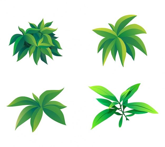 Ilustração, de, forma, de, arbusto