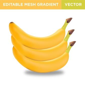 Ilustração de fruta banana