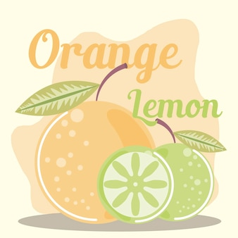 Ilustração de frutas cítricas com limão e laranja
