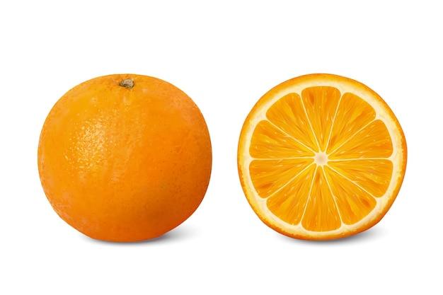 Ilustração de frutas cítricas deliciosas