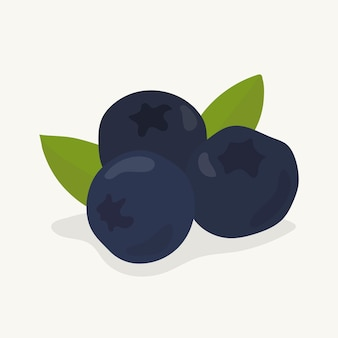 Ilustração de frutas de mirtilo mão desenhada