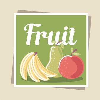 Ilustração de frutas, maçã orgânica fresca, banana e pêra