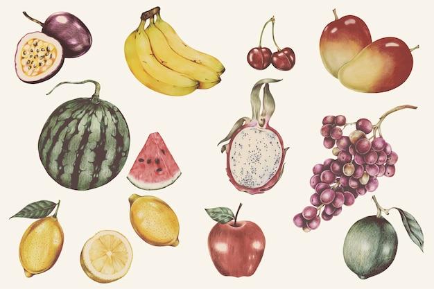 Ilustração, de, frutas tropicais, aquarela, estilo
