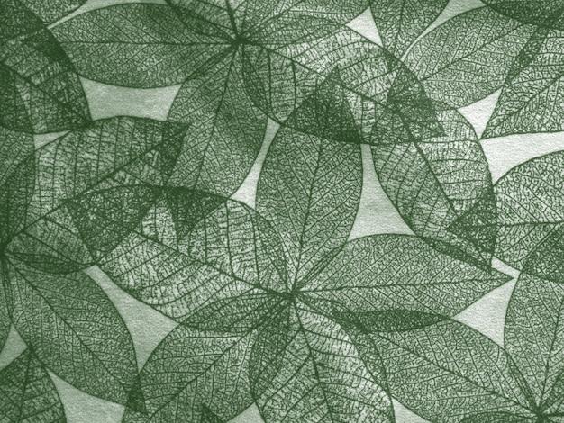 Ilustração de fundo de folha vintage