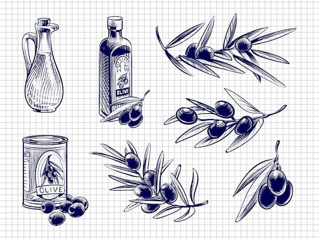 Ilustração de garrafas e azeitonas de azeite