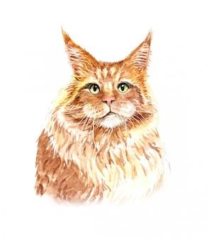 Ilustração de gato em aquarela. impressão de camiseta.