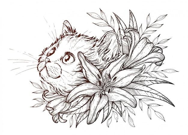 Ilustração de gato
