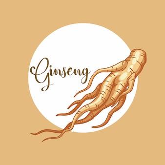 Ilustração de ginseng