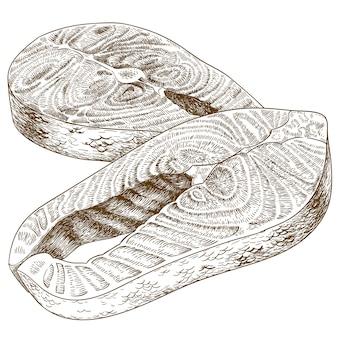 Ilustração de gravura de bife de truta