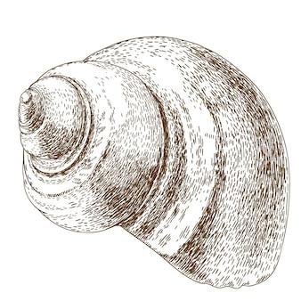 Ilustração de gravura de