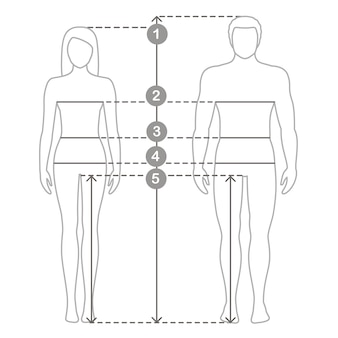 Ilustração de homem e mulher em comprimento total com linhas de medição dos parâmetros corporais