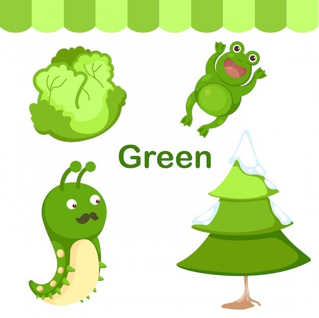 Ilustração, de, isolado, cor, verde, grupo