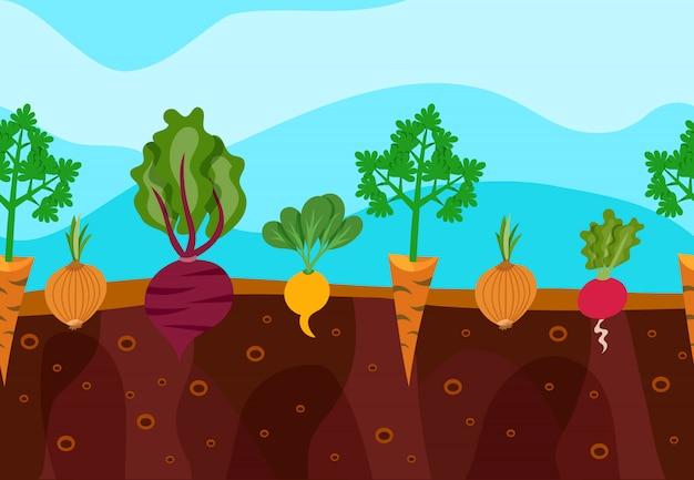 Ilustração de legumes em crescimento