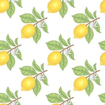 Ilustração de limões. padrão uniforme. frutas em um fundo branco. Vetor Premium