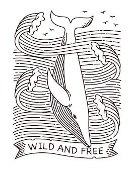 Ilustração de linha de baleia selvagem e livre