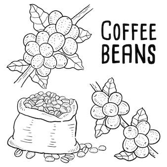 Ilustração de mão desenhada de grãos de café.