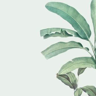 Ilustração de maquete de verão tropical