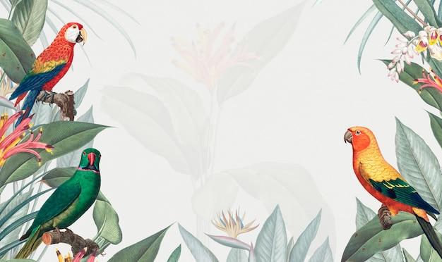 Ilustração de maquete tropical maca