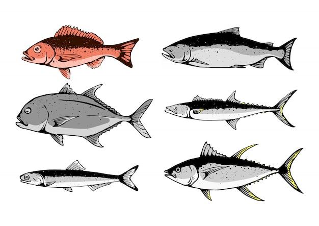 Ilustração de menu definido de peixe