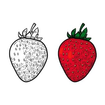 Ilustração de morango em estilo de linha.