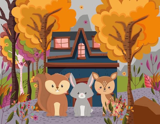 Ilustração de outono de floresta de chalé bonito coelho e esquilo