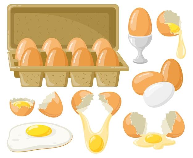 Ilustração de ovos de galinha de desenho animado