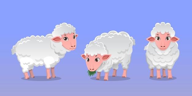 Ilustração de pacote de ovelhas de personagem de desenho animado