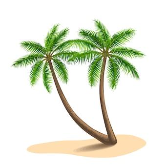 Ilustração de palmeiras