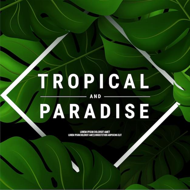 Ilustração de panfleto de verão com tipográfica em fundo de natureza com folhas de palmeira
