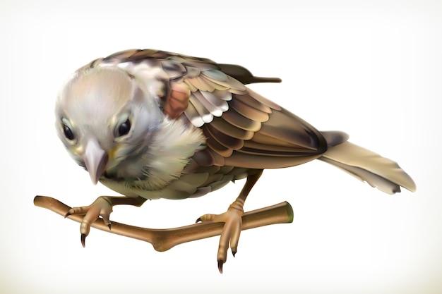 Ilustração de pardal