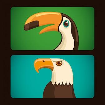 Ilustração de pássaros