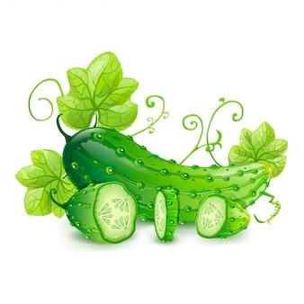 Ilustração de pepinos