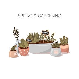 Ilustração de primavera e jardinagem em estilo cartoon plana. plantas em casa em vasos bonitos.