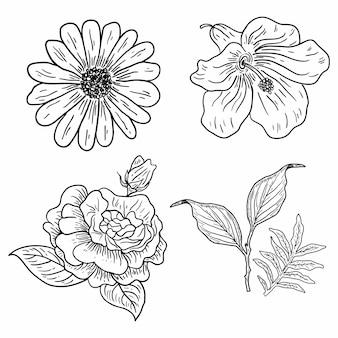 Ilustração, de, quatro, clássico, flores