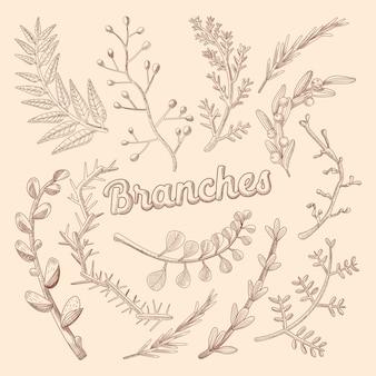 Ilustração de ramos desenhados à mão